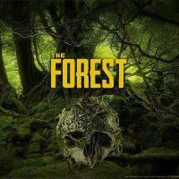 خرید اکانت اریجینال استیم بازی The Forest