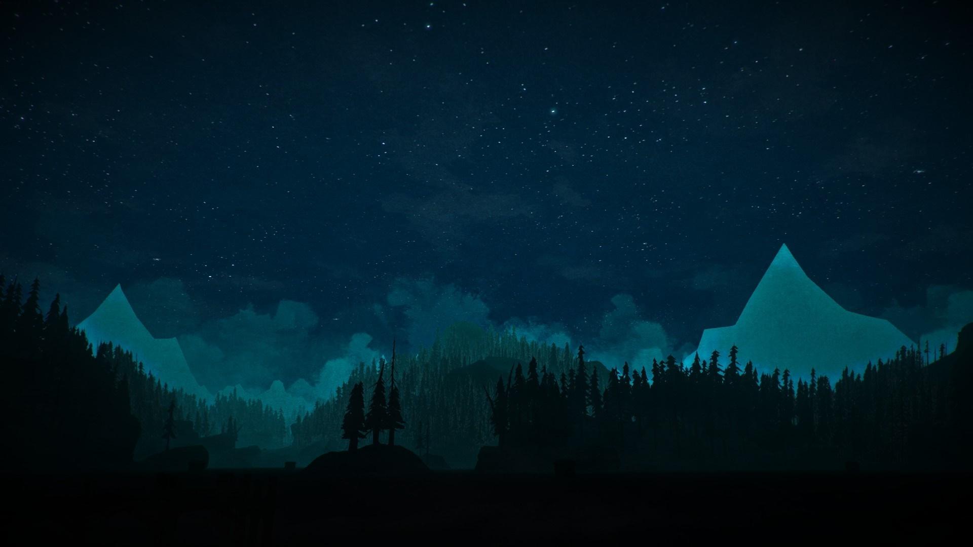 سی دی کی اریجینال استیم بازی The Long Dark