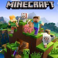 سی دی کی اریجینال بازی Minecraft Java Edition